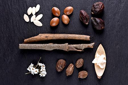 Ingredientes TOP para nutrição e hidratação da pele