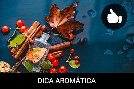 Os melhores aromas de outono que deve experimentar!